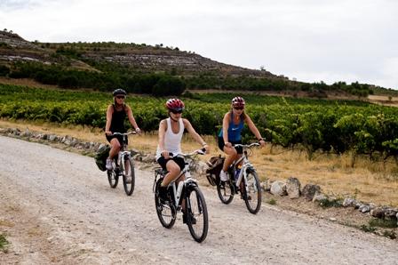 Ciclistas entre viñedos