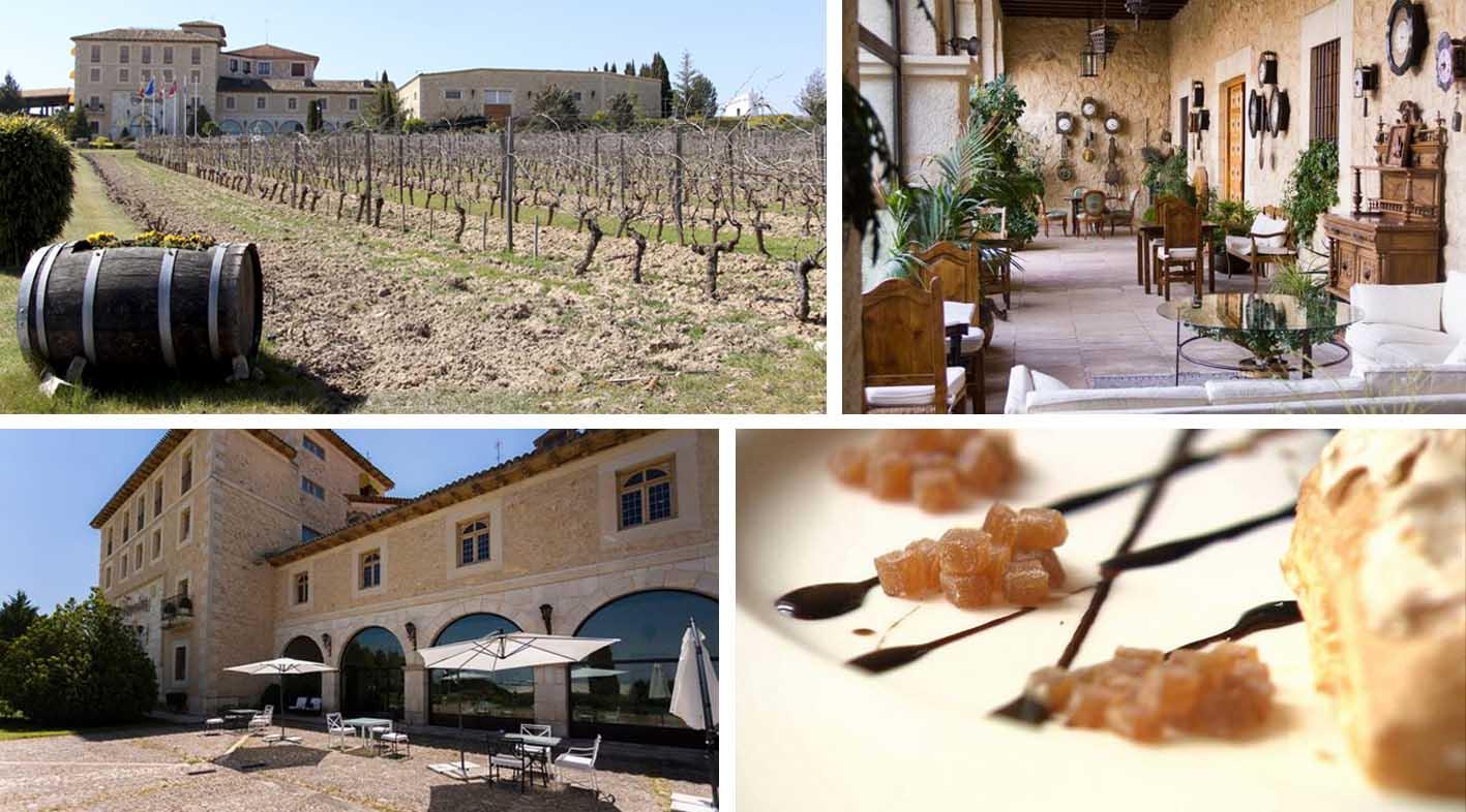 torremilanos_ruta del vino_ribera del duero_bodega_resstaurante