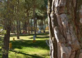 Camping Riberduero Peñafiel