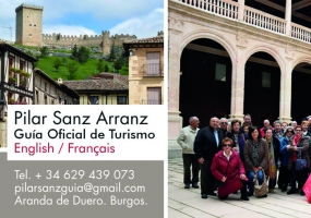 Guía Turístico Pilar Sanz