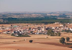 Bodegas y Viñedos Monteabellón (Nava de Roa)