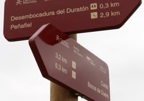 Nuevo Puente Duero de Peñafiel. Recorridos cercanos.