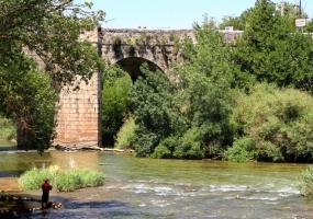 Puente sobre el Duero: Quintanilla de Onésimo y Olivares