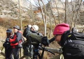 ABUBILLA Ecoturismo y Formación Ambiental (Candelas Iglesias)