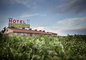 Hotel Tudanca Aranda: Viñedos
