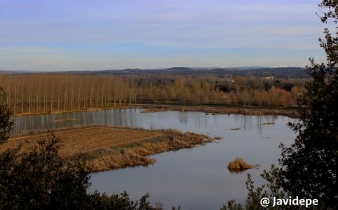 Villalba Humedales del Carrascal