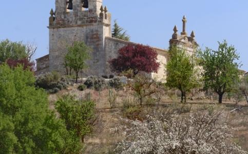 Quintanamanvirgo Iglesia San Facundo y Primitivo