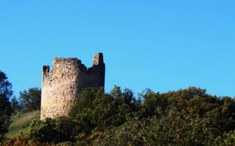 Castrillo de la Vega: Restos del Castillo