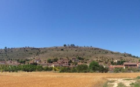 Hontangas