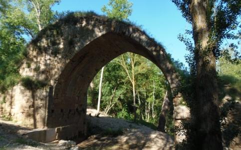 Castrillo de la Vega: Puente Roque