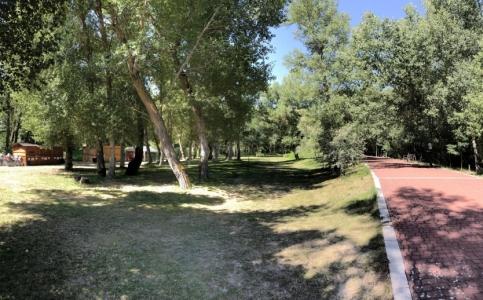 Valbuena de Duero Parque de la Isla